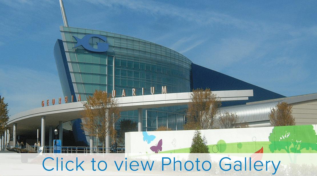 Georgia Aquarium   Installed November, 2005