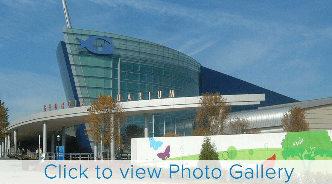 Georgia Aquarium | Installed November, 2005