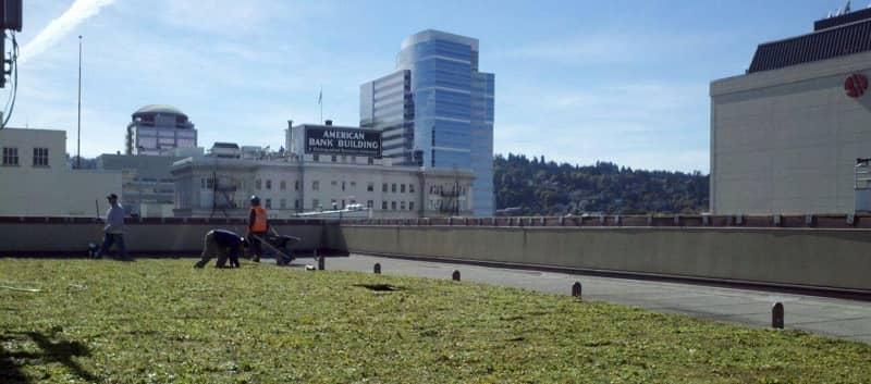 FiberTite Green Roofing System