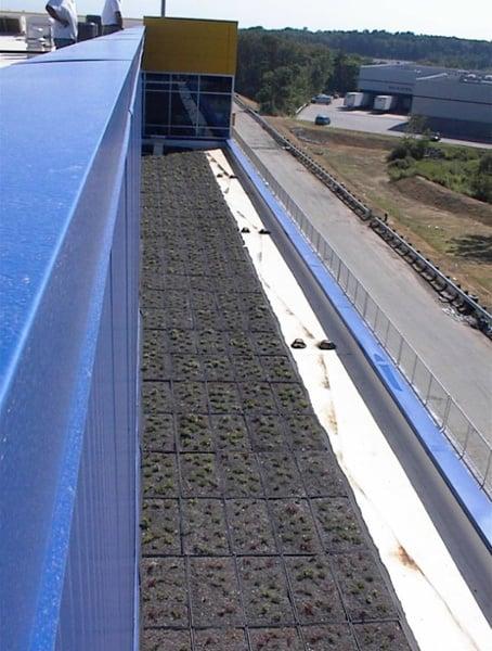 Modular Green Roof at IKEA in Stoughton, Massachusetts