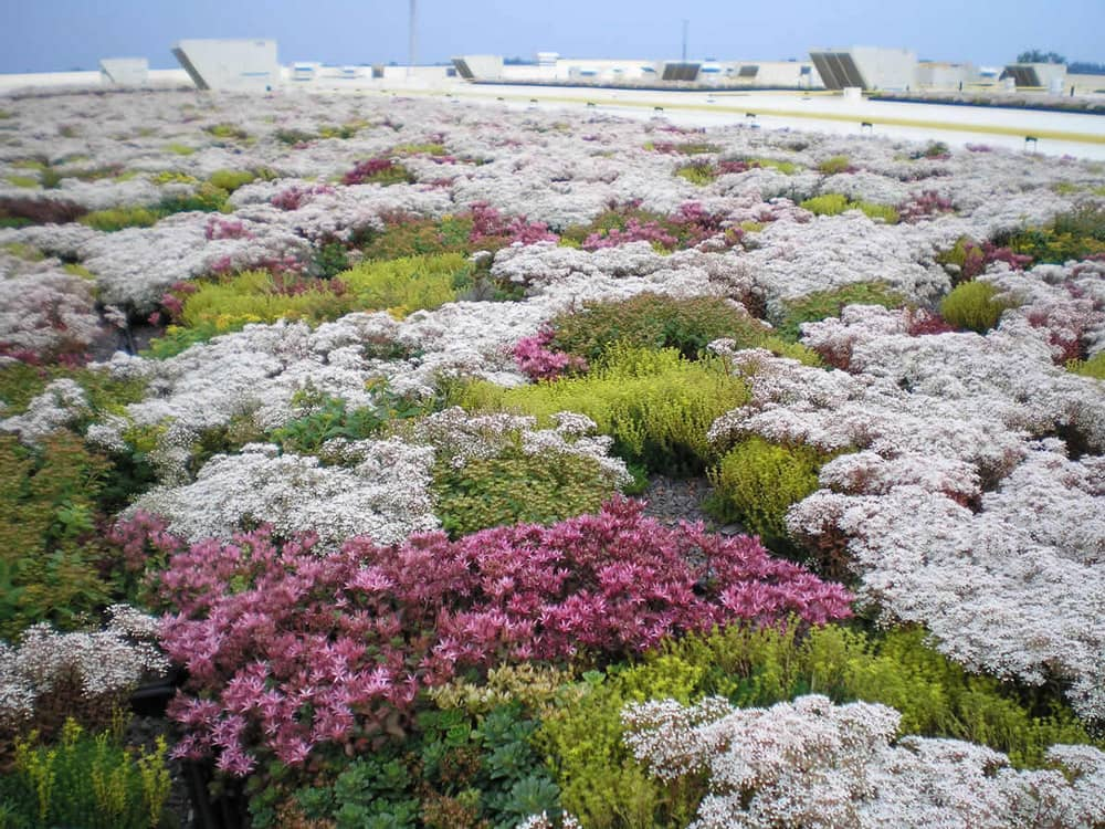 FiberTite Green Roofing System